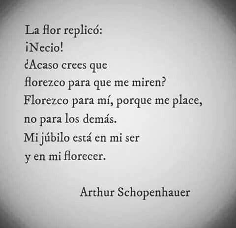 ...Florezco para mí, porque me place, no para los demás. Mi júbilo está en mi ser y en mi florecer. Artur Schopenhauer