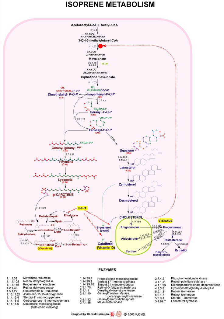 Biochemistry of Metabolism