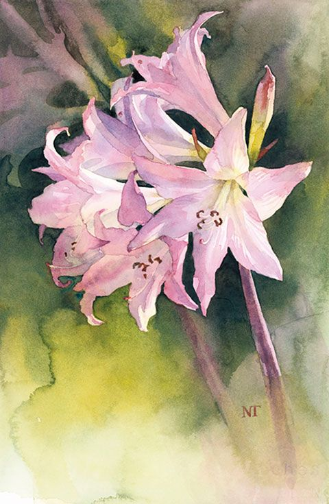 http://www.watercolours.co.nz/index.htmWatercolours: Original paintings