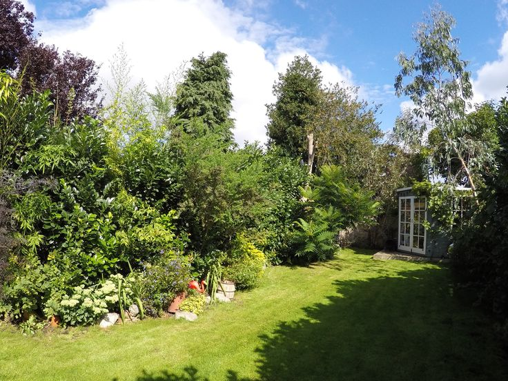 Summerhouse, Garden, Lawn, Grass, Gardening, Victorian House, Renovation.