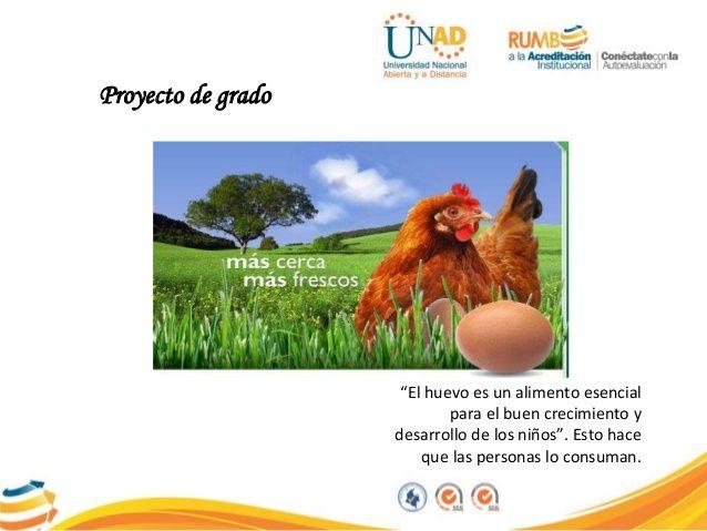 PROYECTO DE GALLINAS PONEDORAS PARA LA PRODUCCIÓN Y COMERCIALIZACIÓN …