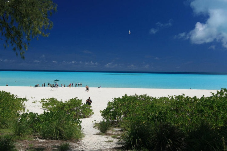Midway Island. The beach we used to go to almost every single day! Someday, we will meet again....