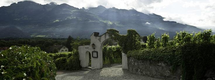 Fürstentum Liechtenstein: Weinkultur in Liechtenstein