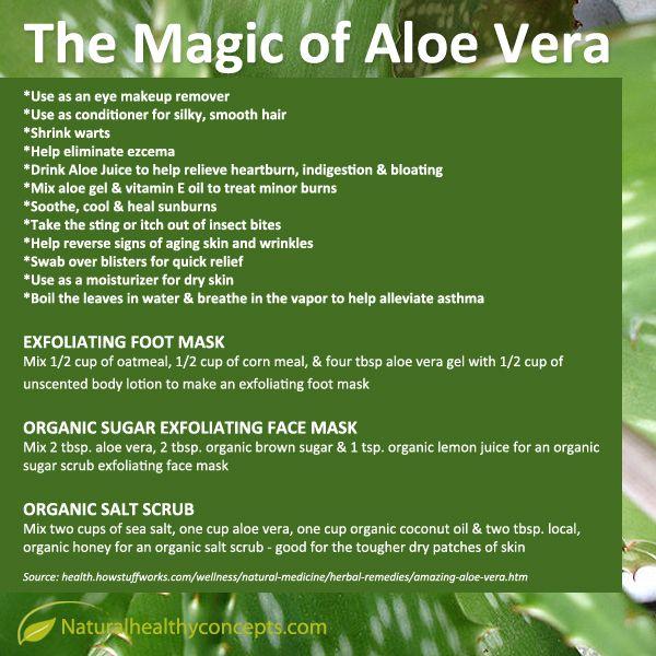 The Magic of Aloe Vera