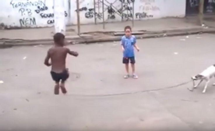 Σκύλος παίζει σχοινάκι μαζί με τα παιδιά στη Βραζιλία