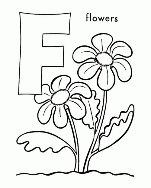 1000 images about Preschool Theme Flowers on Pinterest
