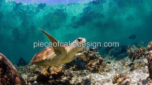 "3"" Round ~ Sea Turtle Background Birthday ~ Edible Image Cake/Cupcake Topper!!! Quantumchaos Media http://www.amazon.com/dp/B00E0DJHR0/ref=cm_sw_r_pi_dp_-s0cub0N0XAFS"