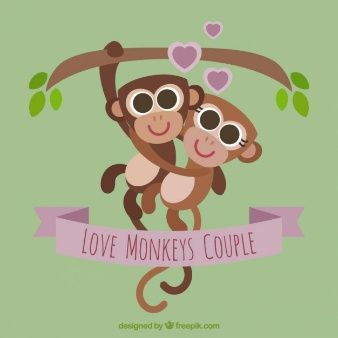 Pareja de monos amorosos