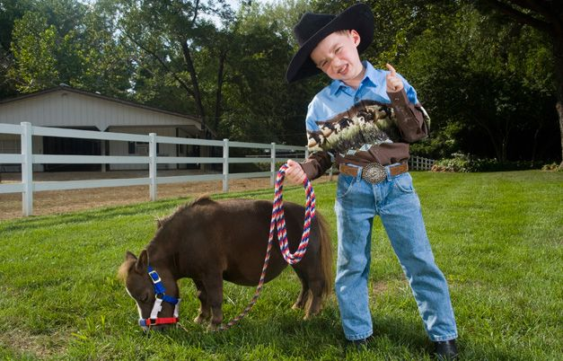 As of 7 July 2006, the record for the smallest living horse is Thumbelina, a miniature sorrel brown mare who measures 44.5 cm (17.5 in) to the withers and is owned by Kay and Paul Goessling (Both USA) who live on the Goose Creek Farm Inc, St Louis, Missouri, USA.