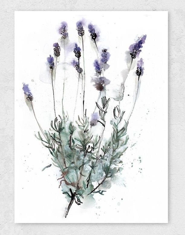 40 Spectacular Bathroom Picture And Wall Art Decor Ideas Watercolor Wall Art Botanical Watercolor Floral Wall Art