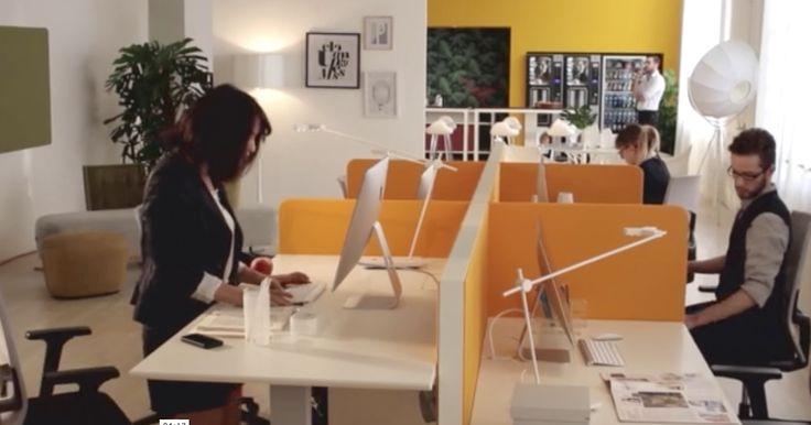 ESTEL IBERICA : El diseño de la oficina influye en la productividad laboral