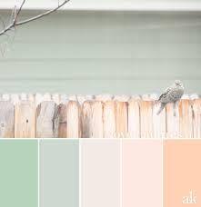 pastel pantone fabric blush peach - ค้นหาด้วย Google