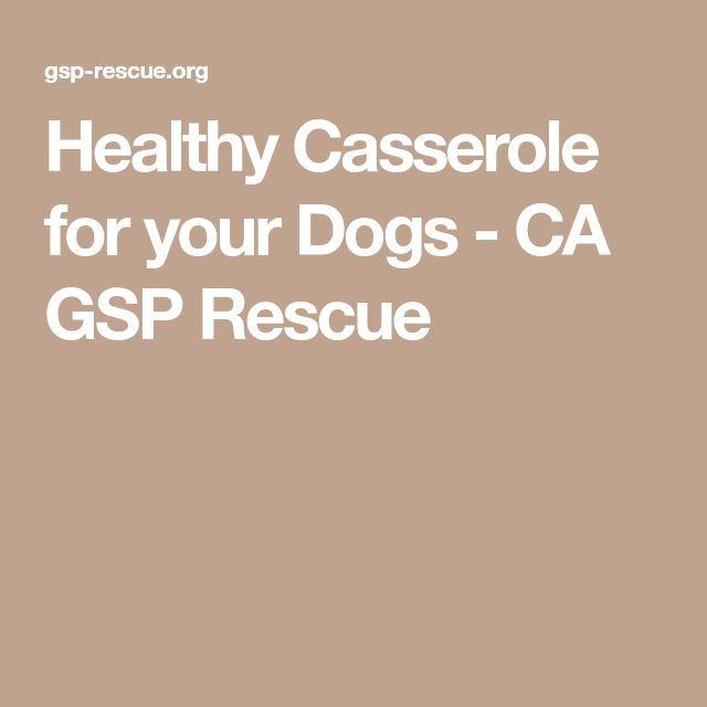 Healthy Casserole for your Dogs - CA GSP Rescue