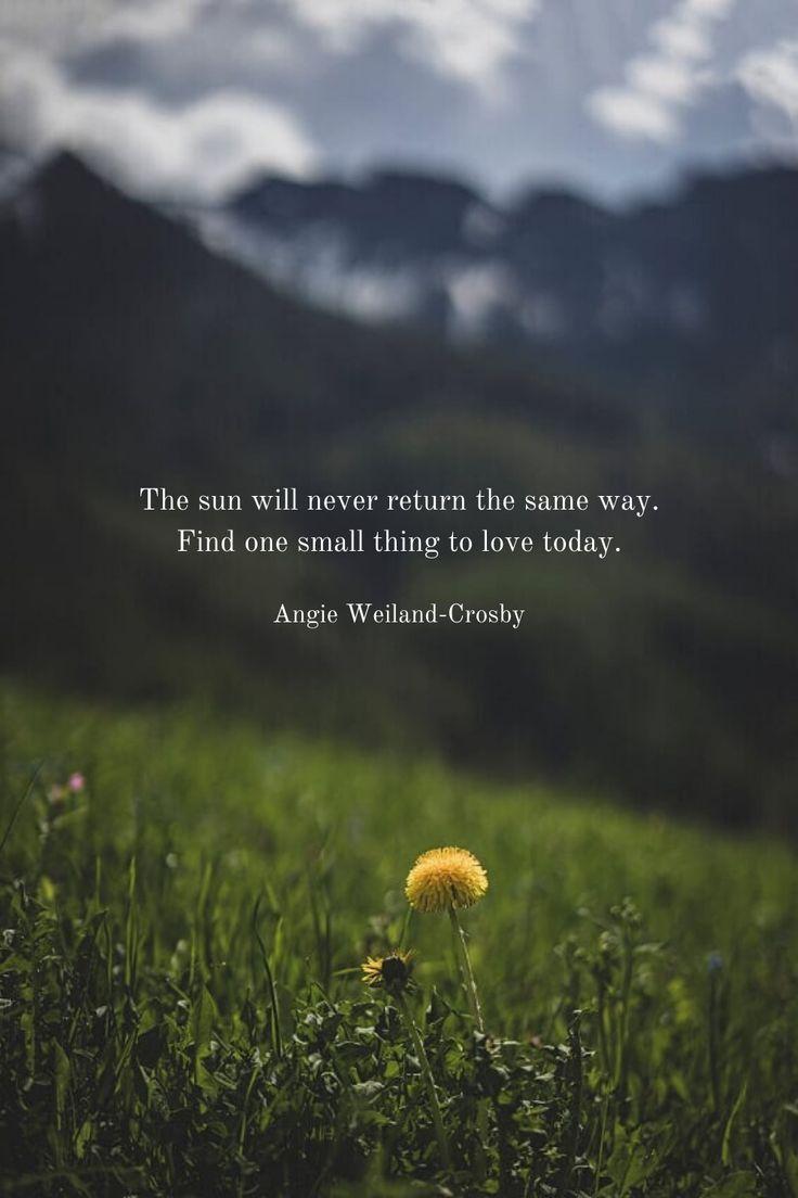 Time for Stillness in 4  Gratitude quotes inspiration, Wisdom