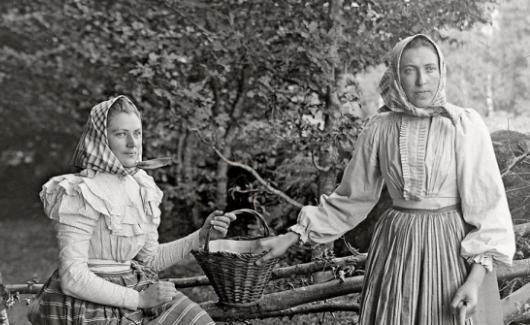 Swedish berry pickers  Lunds Kulturhisoriska museum/BL Bildbyrå