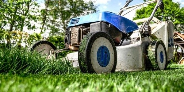 Get Your Lawn Into Gear For The BBQ Season