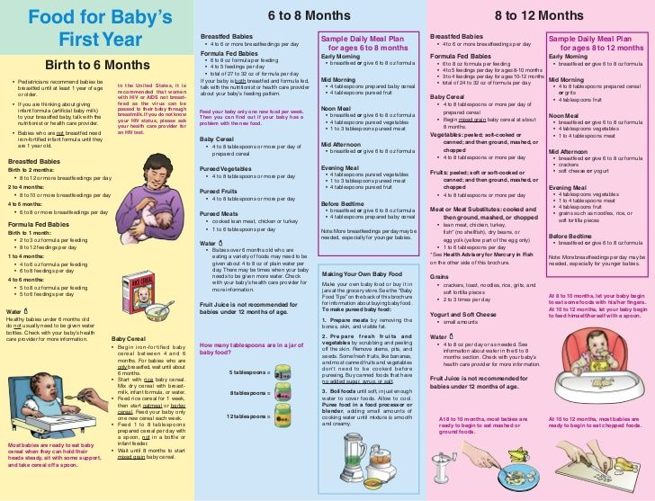 Baby Food And Bottle Feeding Schedule