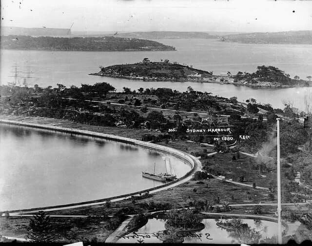 Sydney Harbour in 1880.Farm Cove with Garden Island in the background then heading out towards The Heads in 1880. National Library of Australia.