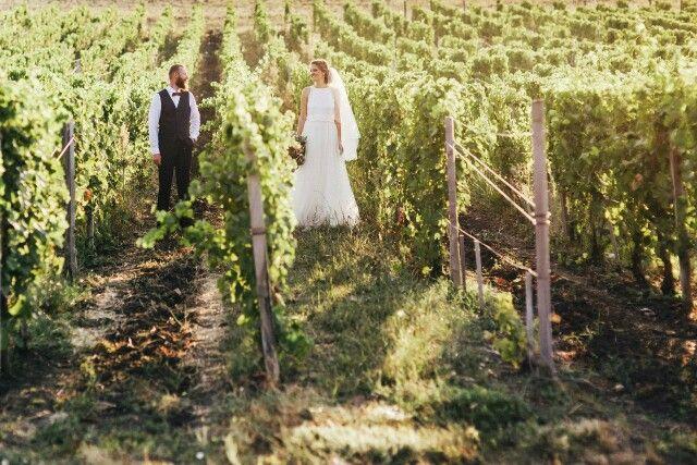 Свадьба на виноградниках