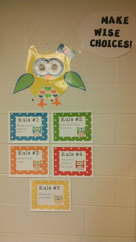 Owl theme classroom rules                                                                                                                                                                                 More