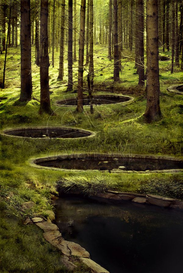 The Woods Between the Worlds from The Magician's Nephew. I need to repine this thirty times. the magnitude..