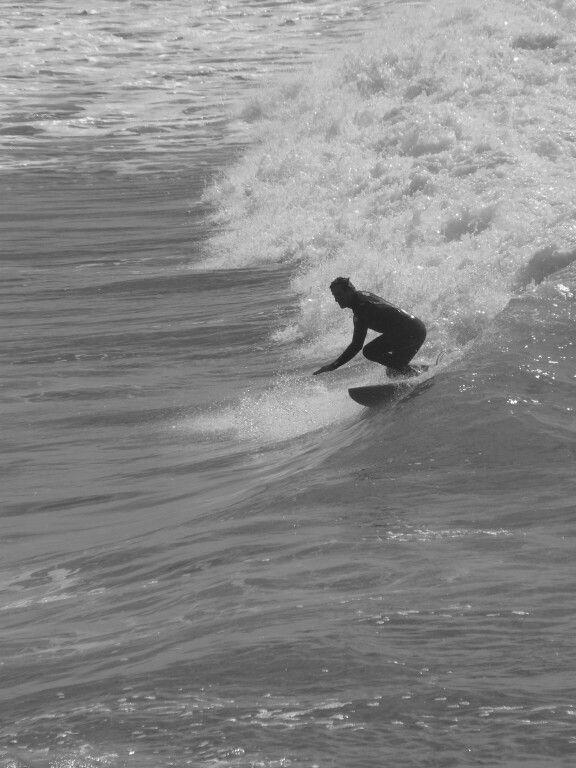 Surf venice