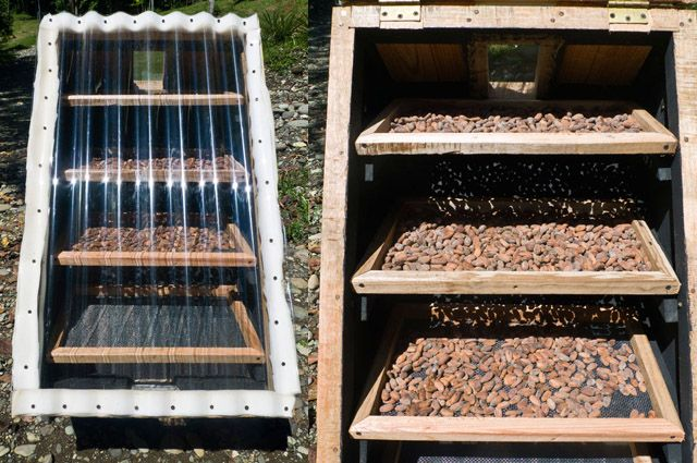 How To Make A Better Solar Dehydrator