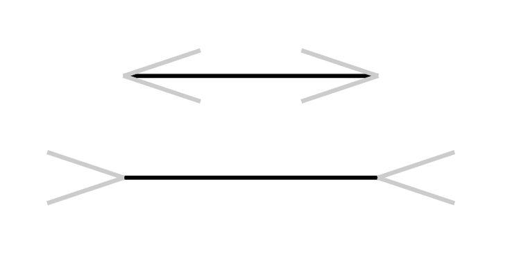 Welke zwarte lijn is langer?