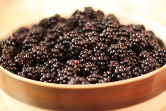 Blackberries: Where To Find Them, How To Pick Them & What To Make With Them - Eating Our Words