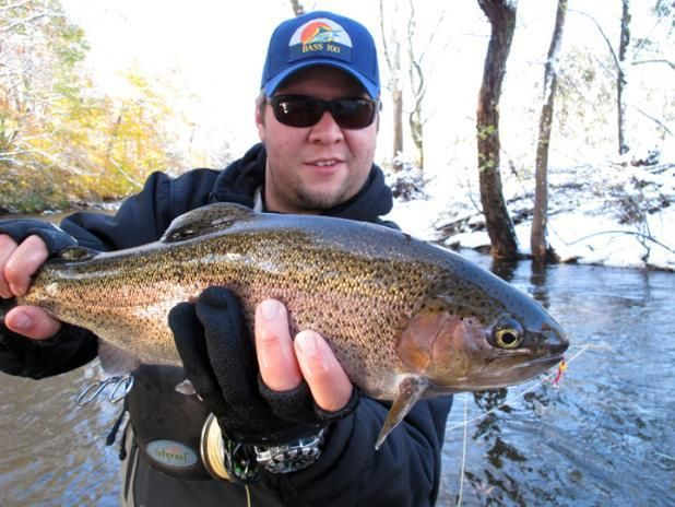 Fly fishing tips for catching winter trout field for Fly fishing 101