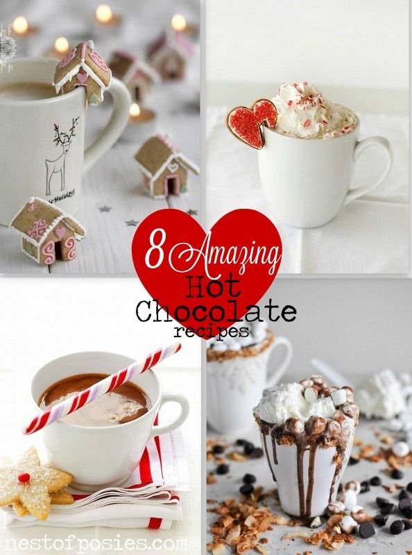 8 Amazing Hot Chocolate Recipes - Nest of Posies - for a
