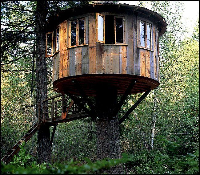 33 Best Treehouses / Boomhutten Images On Pinterest