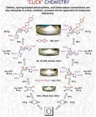 Click chemistry applications in drug discovery