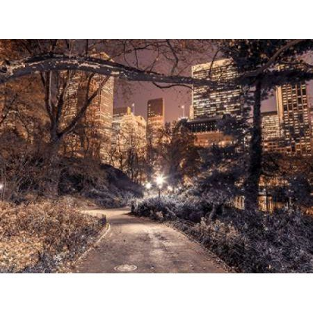 Evening view of Central Park in New York City Canvas Art - Assaf Frank (18 x 24)