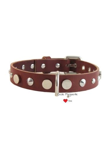 Collare per Cani in Cuoio con Borchie a forme differenti.Real Cowhide Dog Collar with different shapes Studs. #cmlovepets #dogaccessories #luxurypet #animallovers #pets #petlovers #petslovers #petslove #petslover #doglove #doglovers #accessoripercani #accessorilussopercani #petsaccessories #petsaccessory #cani #dog #dogs #luxurydogaccessories #modacani #lussopercani #lussocani #madeinitaly #fashiondogs #collaricuoio #cowhidedogcollars #collariborchie #studsdogcollar #studsdogcollars