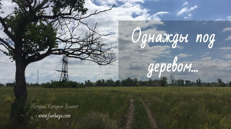 «Однажды под деревом…» — записки из Дневника Поиска Видения