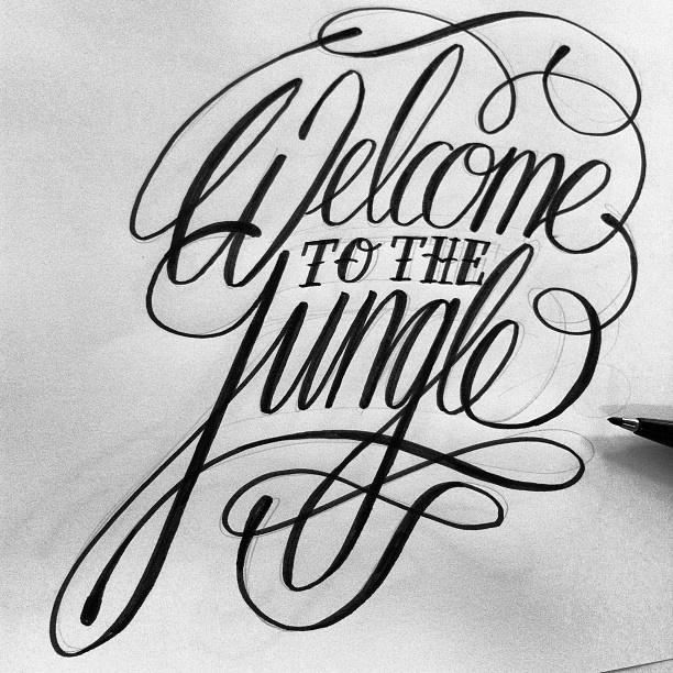 Welcome to The jungle ... Of instagram!  - @// Bijdevleet //   Webstagram