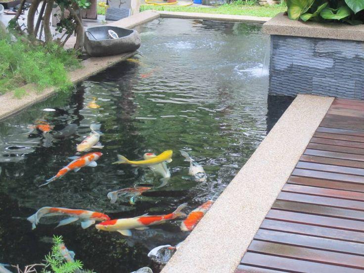 17 Best Ideas About Koi Pond Design On Pinterest Pond