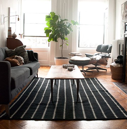Maxwell from Apartment Therapy's living room with Nate Berkus for Target arrowhead rug. Black, white, natural, fiddle leaf fig tree, charcoal couch, Eames lounge chair, wood floors, nice light. Really liking this.