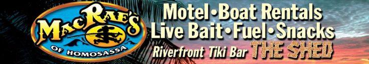 Homosassa: MacRae's motel and boat rentals... $140+gas pontoon day rentals