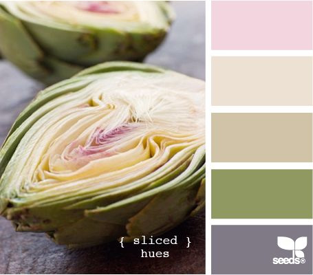 sliced hues: Colors Combos, Design Seeds, Bedrooms Colors Ideas Chips, Pink Grey Colors Palettes, Slices Hue, Colors Combinations, Colors Schemes, Colors Palettes Pink Brown, Green Brown Colors Palettes