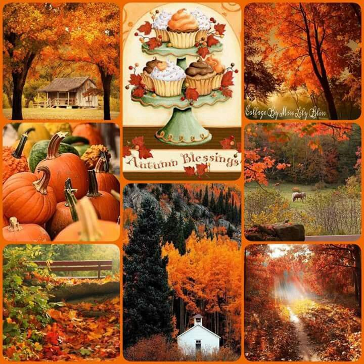 Fall Scenes Wallpaper With Pumpkins Pin By Sheila Roman Barbosa On Fall Decor Autumn Scenery