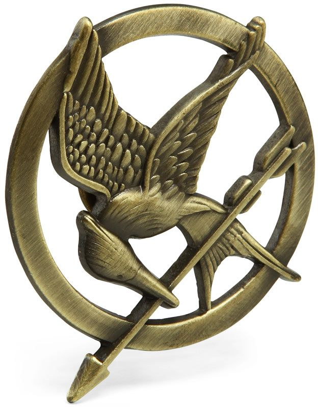 The Hunger Games Mockingjay Pin. I can't lie I would really like one, the books while being a simple read were not simple concepts. I also love the idea of the mocking jay.