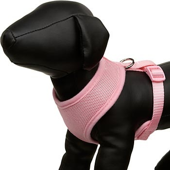 how to put on a dog harness petco