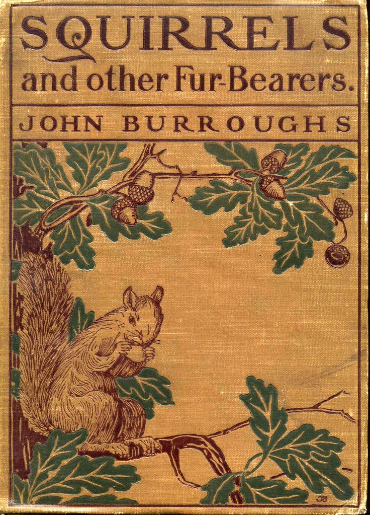 "Vintage Book- ""Squirrels and other Fur Bearers"""
