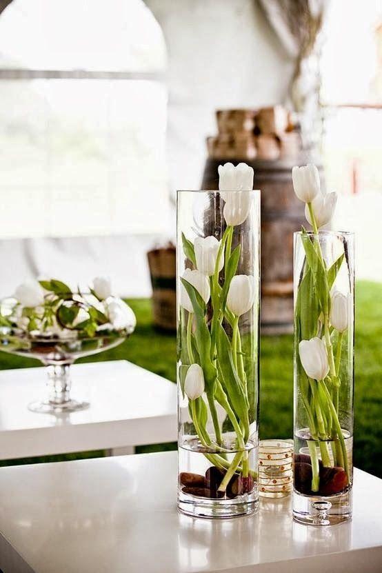 tulipe blanche en vase                                                                                                                                                      Plus