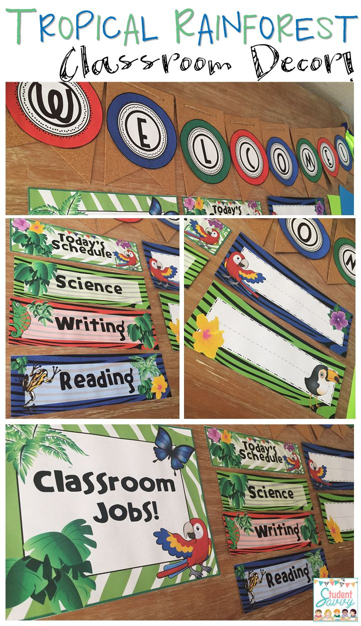 Classroom Decor Posters ~ Best ideas about rainforest classroom on pinterest