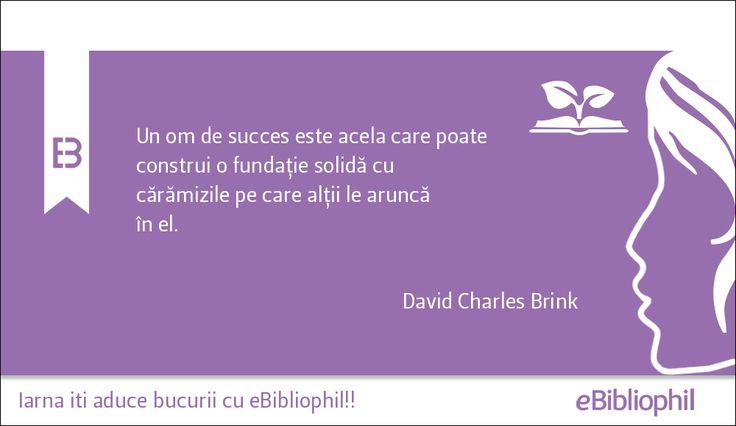 """""""Un om de succes este acela care poate construi o fundație solidă cu cărămizile pe care alții le aruncă în el."""" David Charles Brink"""