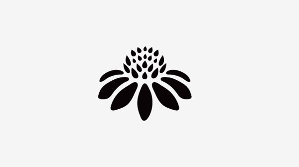 Flower Logo for EVE