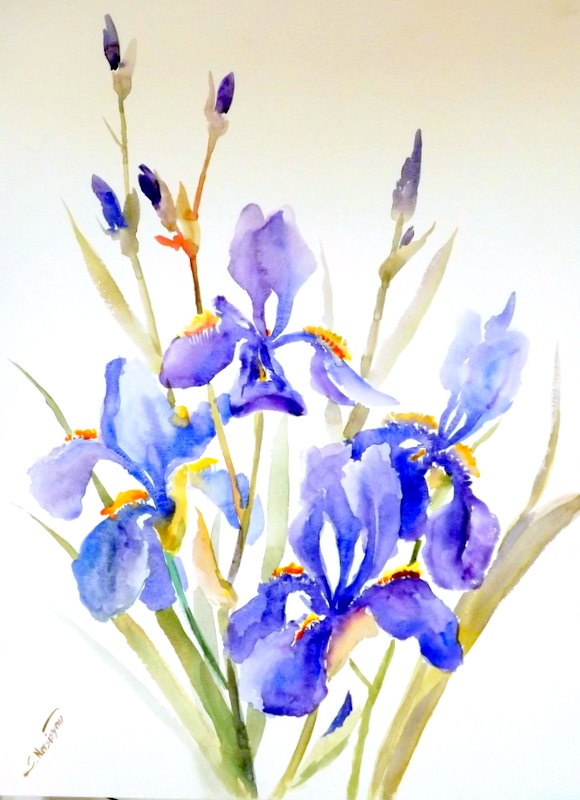 Irises, original large watercolor painting,  24 X 18, modern abstract impressionist, expressionism. $77.00, via Etsy.